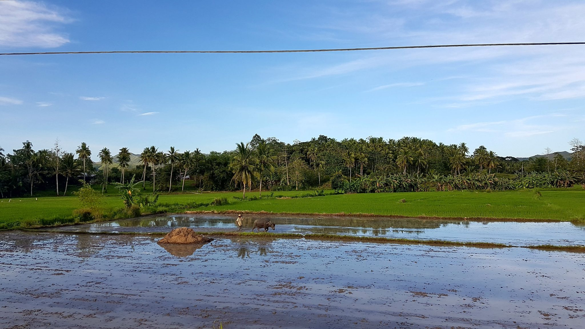 country side Bohol