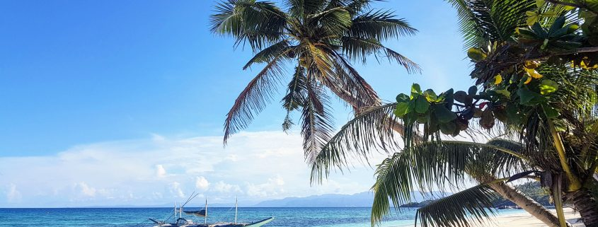 palmboom strand bootje blauw water